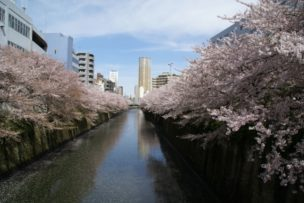 桜でも有名な中目黒はショコラも充実しています。