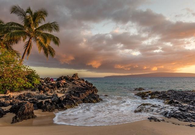 ハワイのチョコレート!カカオの栽培もしているハワイの秘密!